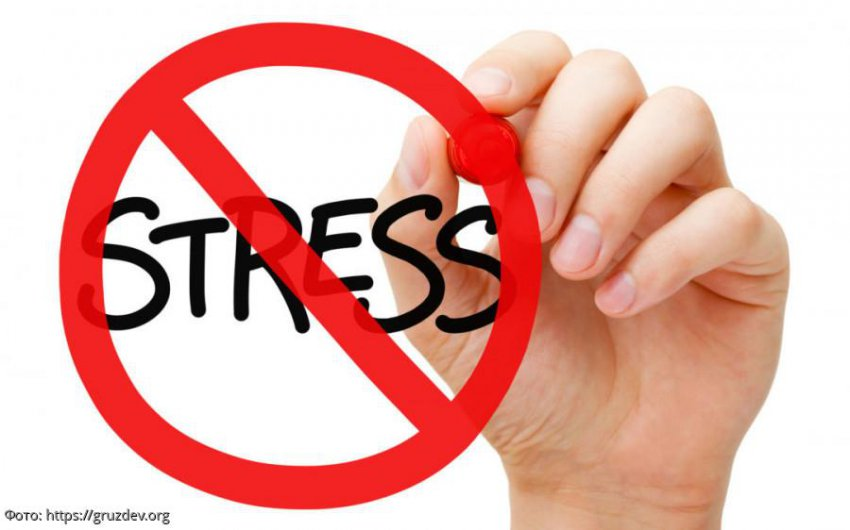 Влияние хронического стресса на работу мозга