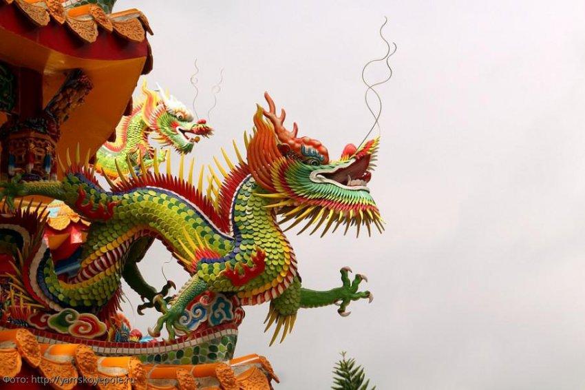 Китайский гороскоп на 14 августа 2019