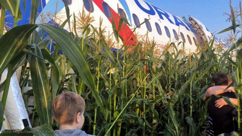 Самолет с 233 людьми аварийно сел на поле в Подмосковье
