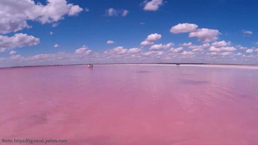 Розовое озеро в Сибири: 31 кв. км солёной красоты