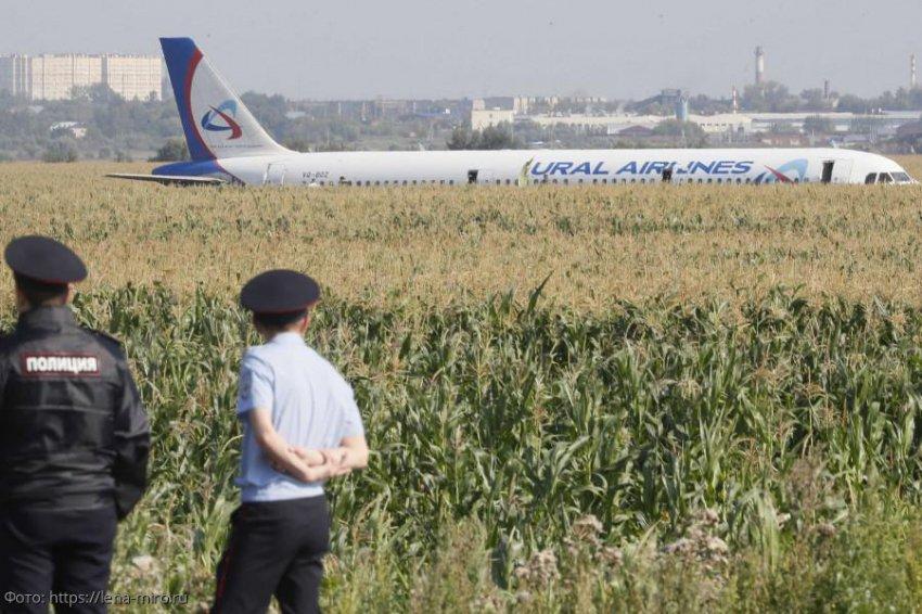 Лена Миро назвала виновных в аварийной посадке самолета в Подмосковье