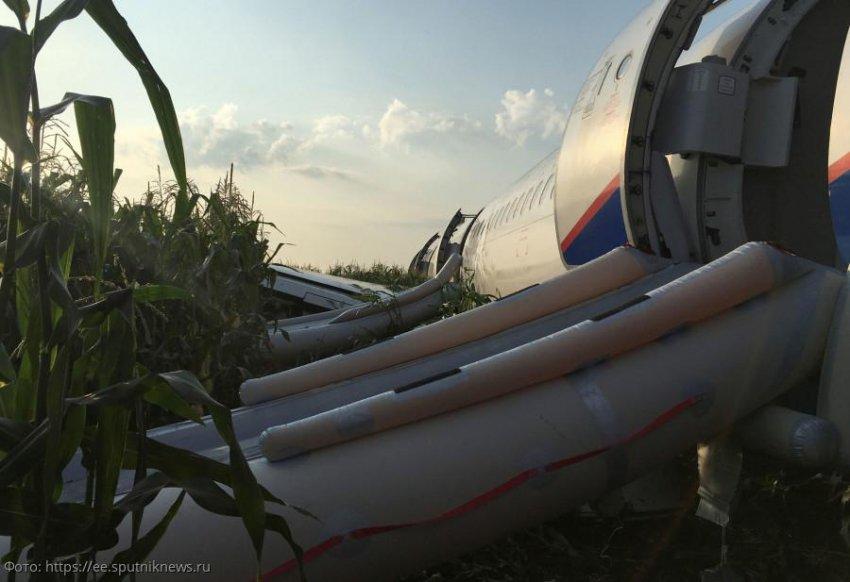 Лена Миро заступилась за пассажирку злополучного рейса в Симферополь, которую затравили в Сети