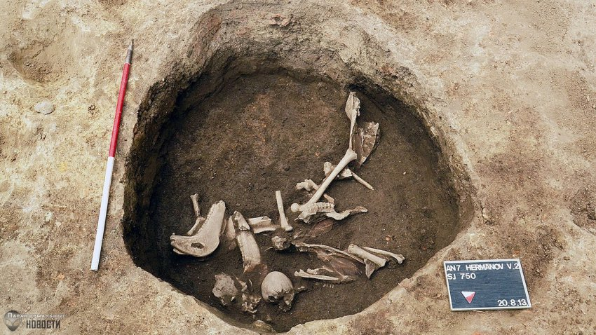 В Хорватии нашли могилы подростков с вытянутыми черепами | Тайны истории | Паранормальные новости