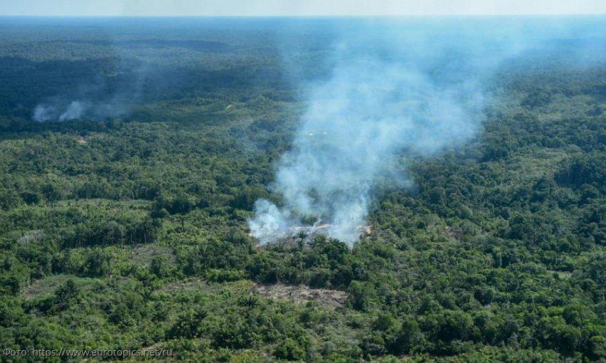Уничтожение лесов Амазонки пожарами и вырубкой не снижает запас кислорода Земли