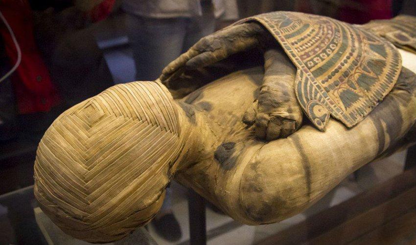 Названа причина смерти древнеегипетского фараона Рамсеса III