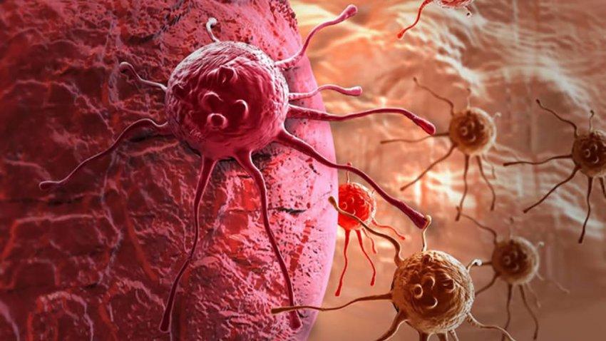 Прорыв в медицине: ученые нашли у рака слабое место