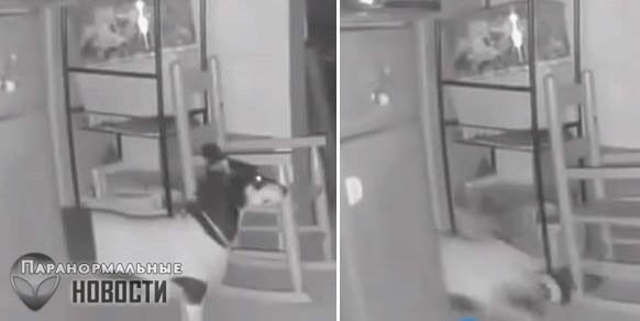 Нечто утащило собаку за дверь | Любопытное видео | Паранормальные новости