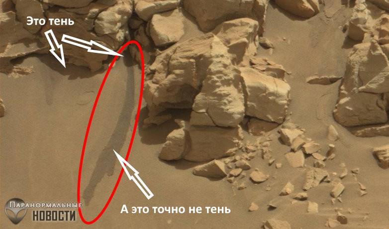 На фото Марса нашли жидкую воду, но НАСА об этом молчит | Тайны космоса | Паранормальные новости