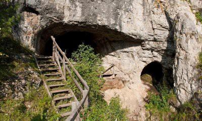 В Денисовской пещере обнаружено самое древнее изображение животного