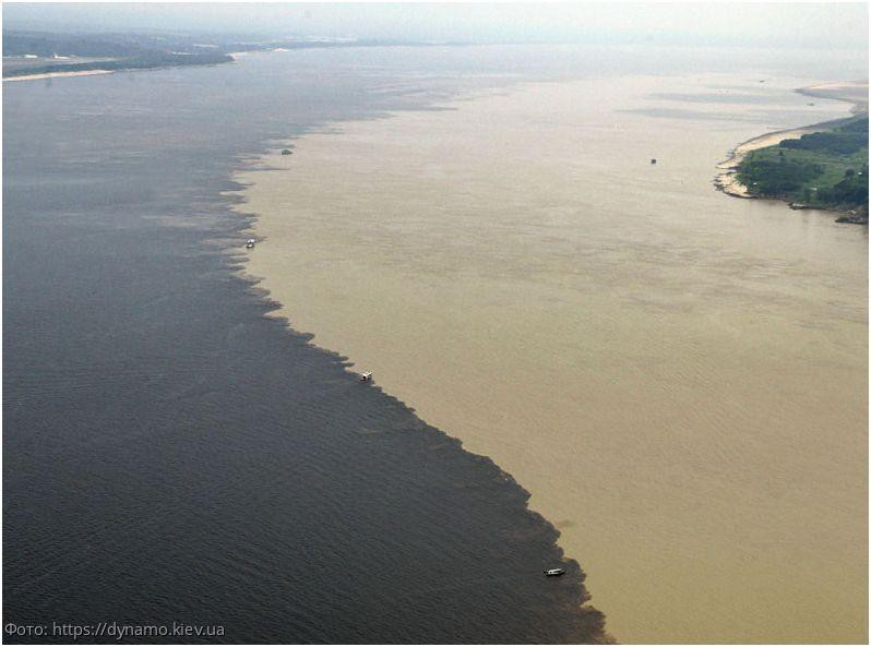 Причины, по которым воды океанов не смешиваются при встрече