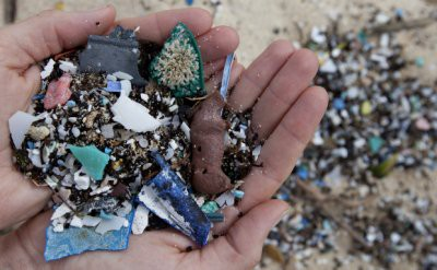 Ученые: Микропластик делает почву менее плодородной