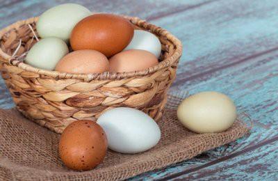 Эксперты развенчали некоторые популярные мифы о куриных яйцах