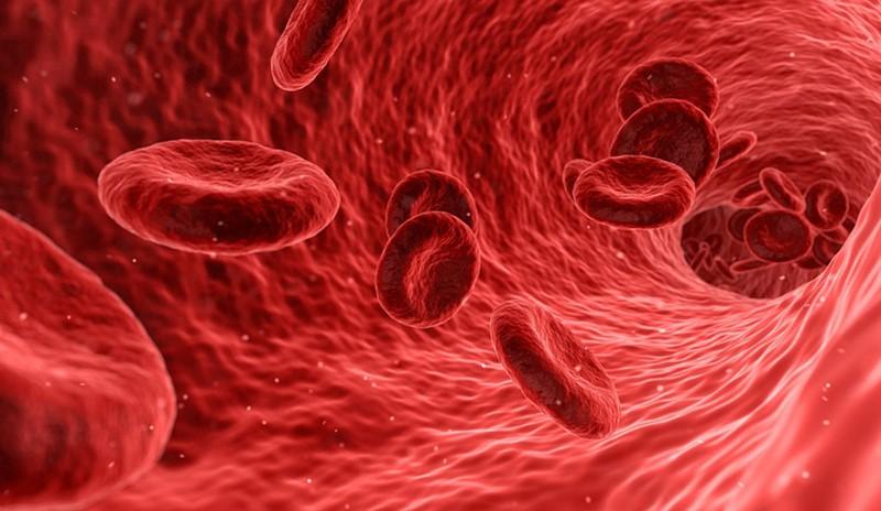 Ученые назвали группу крови, носители которой чаще болеют раком
