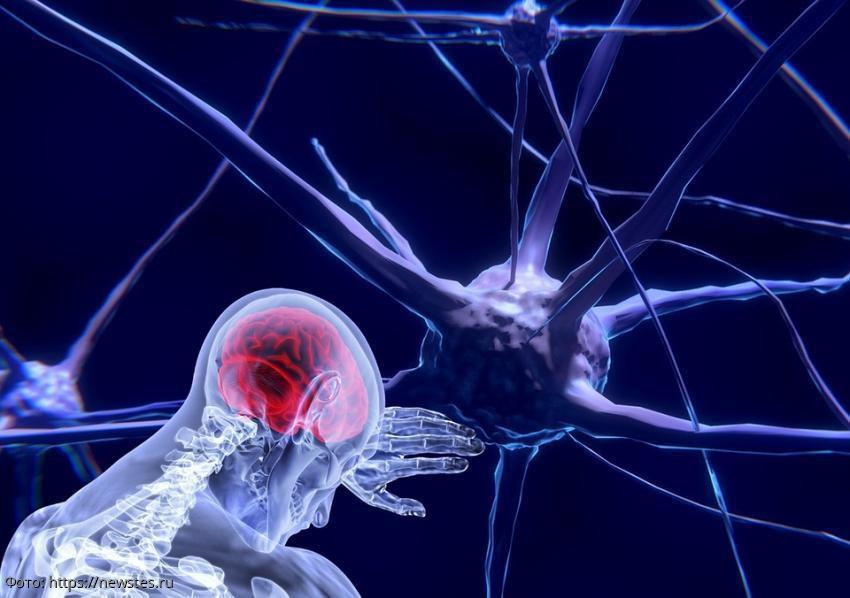 Способы удаления шлаков из головного мозга