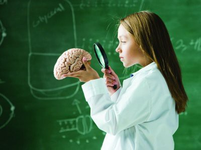 Диетологи назвали главный продукт для мозга