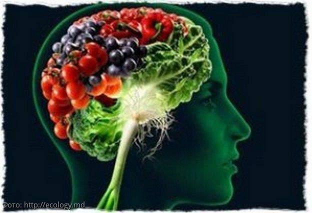Самые полезные для работы мозга продукты