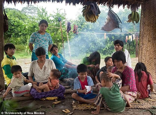 Амазонское племя, не знающее болезней сердца, растолстело из-за доступа к «цивилизованным продуктам» | Болезни и мутации | Паранормальные новости