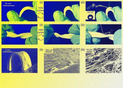 Ученые создали материал, который сохраняет свойства после многократных деформаций