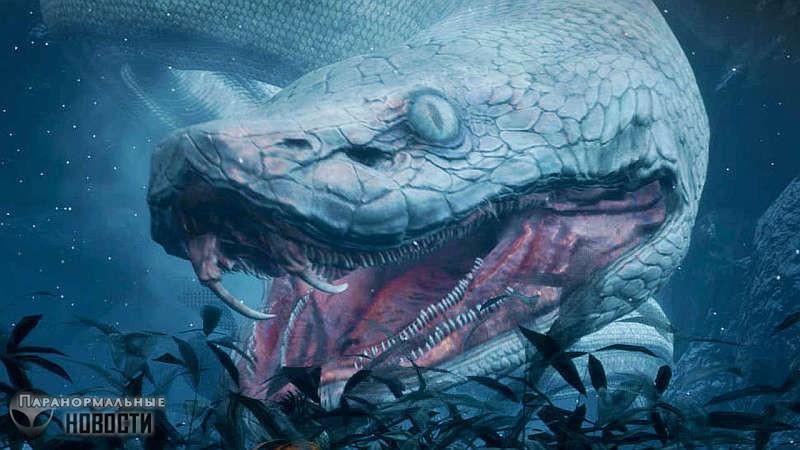 Загадочная 18-метровая змея, которую видели в Калифорнии 150 лет назад | Загадочные существа | Паранормальные новости