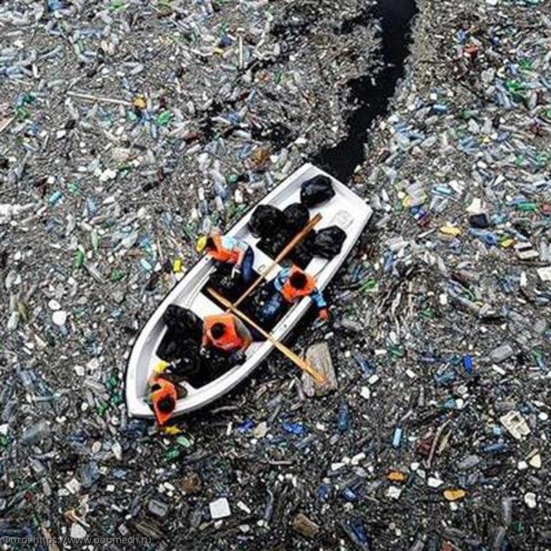 Дрейфующее в Тихом океане мусорное пятно представляет угрозу мировой экологии