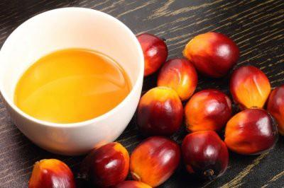 Медики нашли связь между пальмовым маслом и раком
