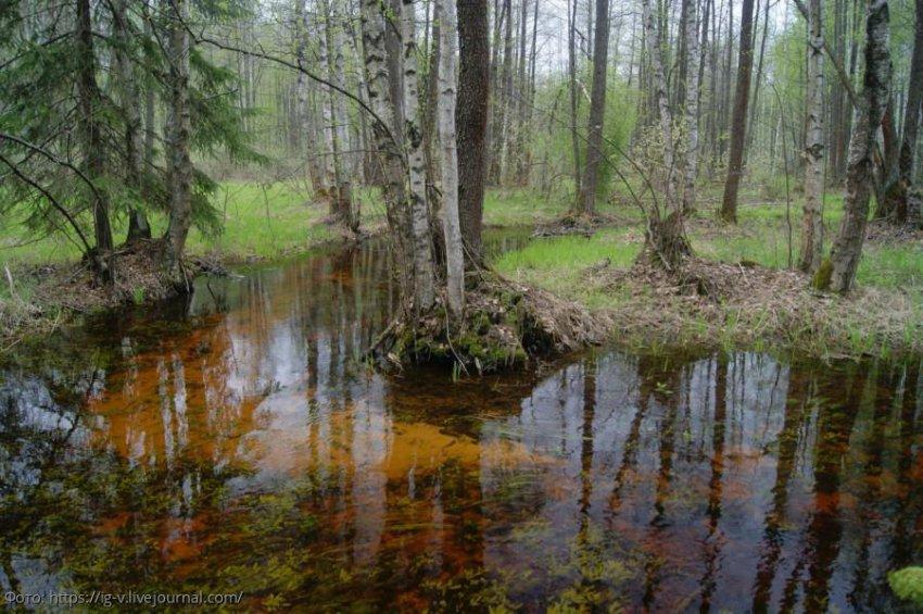 Самые необъяснимые и мистические места в России