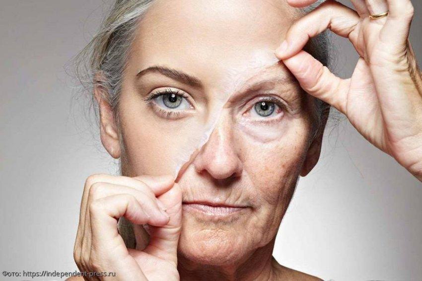 Ученые из биомедицинской компании Intervene Immune сумели обратить биологическое старение