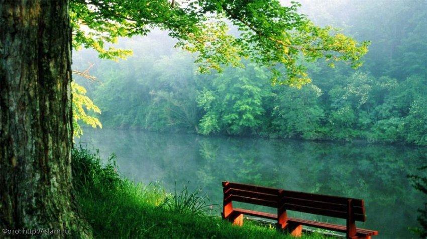 Психолог Светлана Вильнина рассказывает о любви к себе. Часть 2