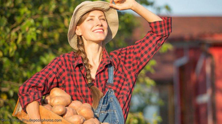 Сезонные овощи и фрукты, которые нужно обязательно включить в свой рацион в сентябре