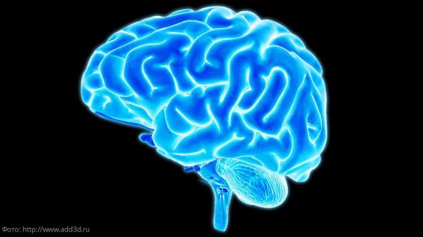 Эффективные способы, которые помогут стать умнее