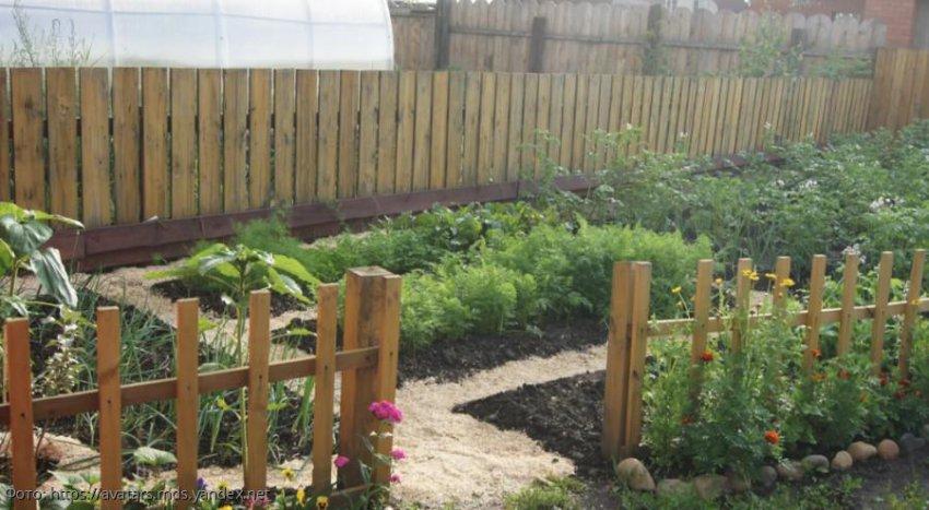 Лунный календарь садовода-огородника с 23 по 29 сентября