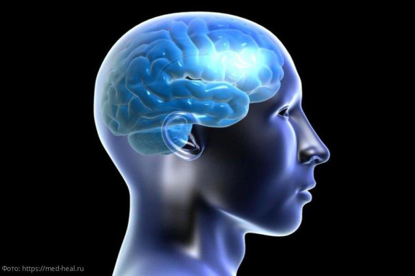 5 видов тренировок для здоровья мозга