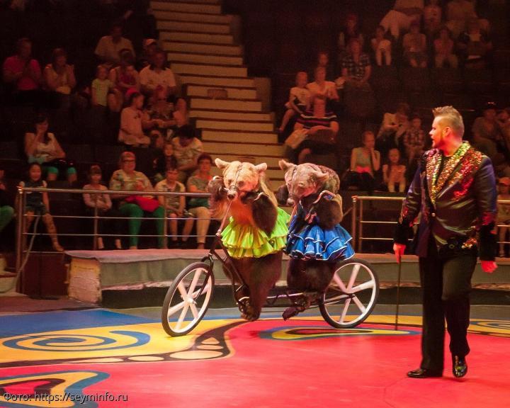 Профессиональный акробат Сергей Штепс о многолетней работе: цирк научил упорству