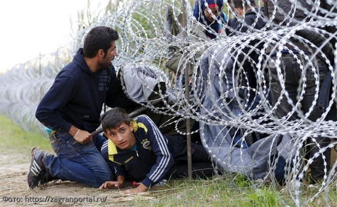 Поправки об усилении ответственности за пособничество незаконной миграции приняты во втором чтении