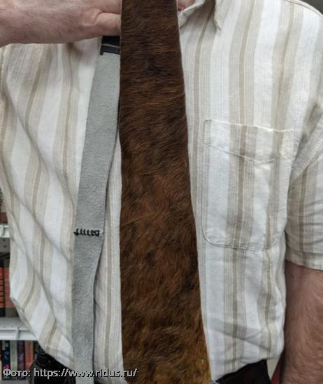 Фото пугающих и странных находок, обнаруженных в секонд-хендах