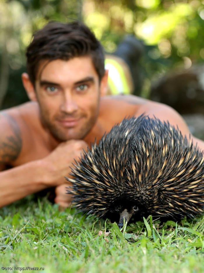 Пожарные из Австралии снялись с животными для календаря-2020