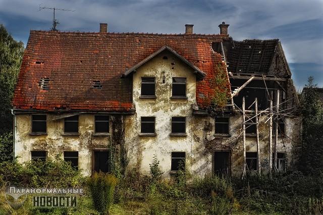 Три лысых ребенка в заброшенном доме