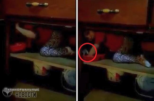На видео засняли руку призрака в шкафу
