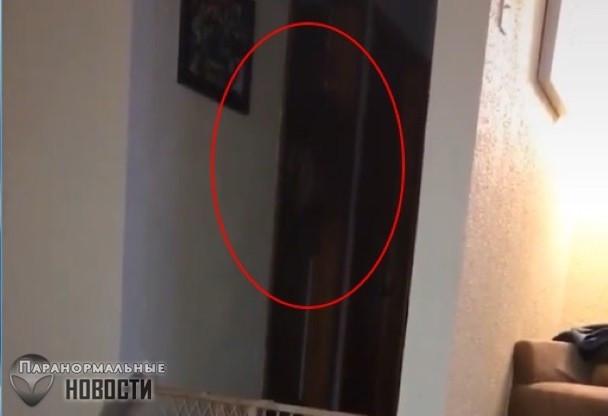 Странное черное существо в доме попало на видео