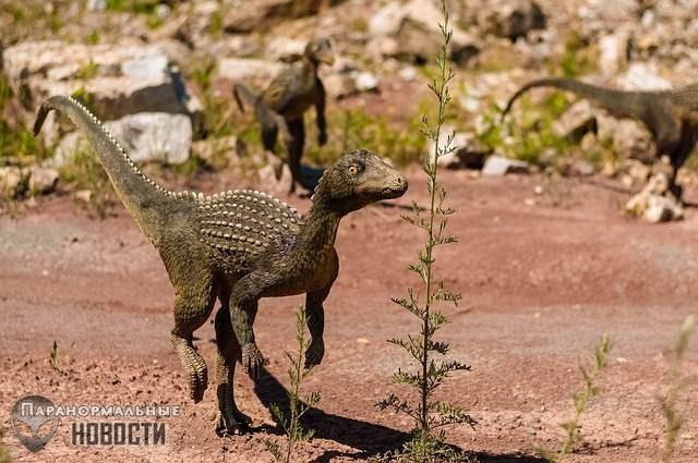 В Техасе регулярно видят существ, похожих на миниатюрных двуногих динозавров