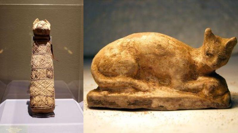 В Египте обнаружена мумия кошки с четырьмя хвостами