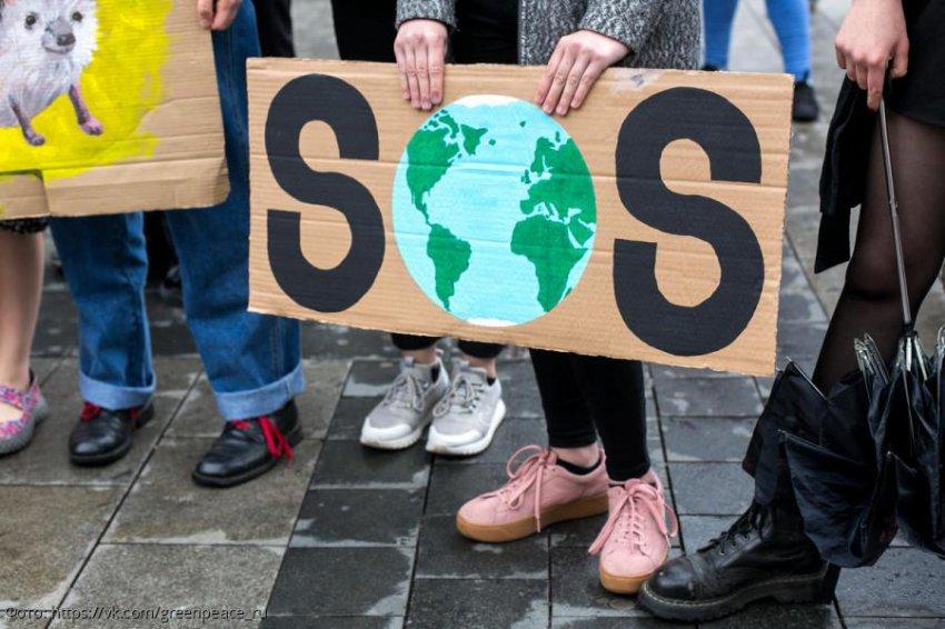 Экоэксперт Татьяна Шауро рассказала о перспективах развития возобновляемых источниках энергии