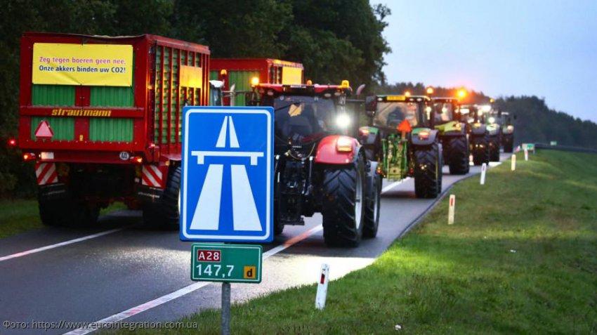 Голландские фермеры выступили с протестом против сокращения поголовья домашнего скота