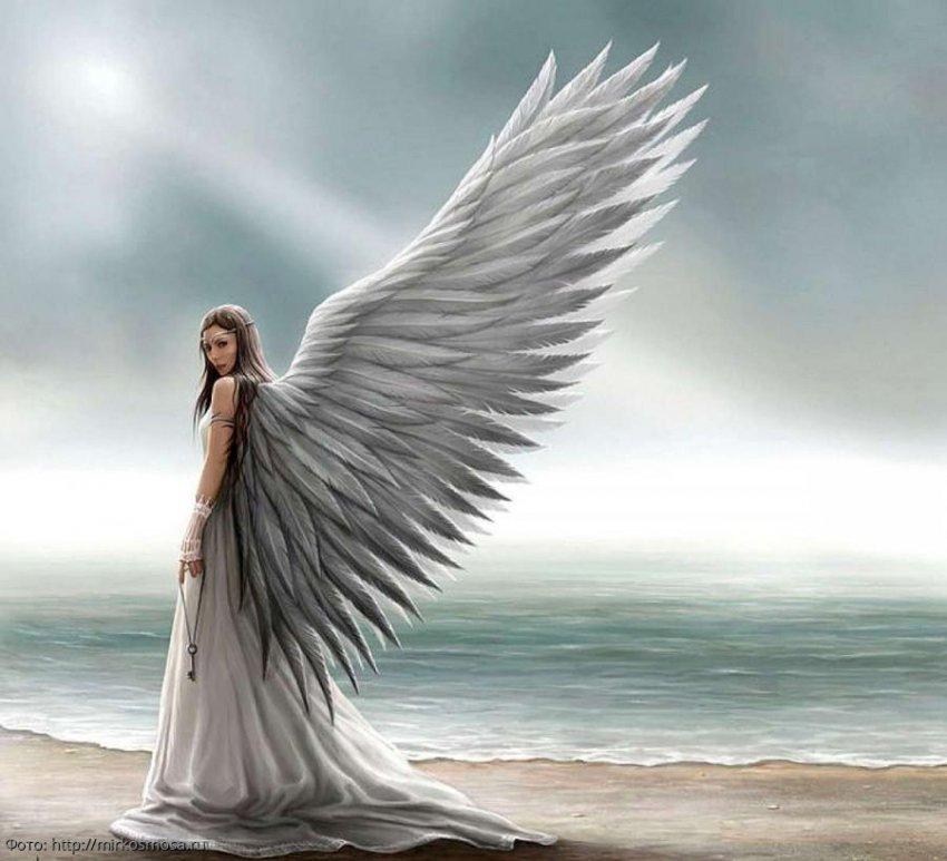 Советы от ангелов-хранителей на 4 октября для всех знаков зодиака