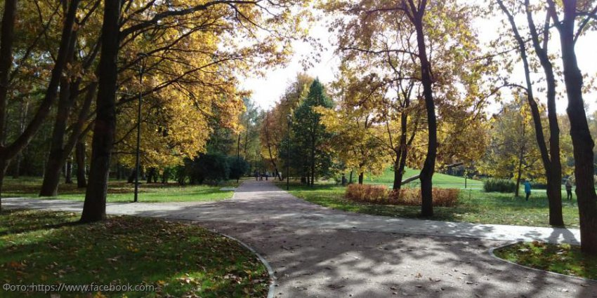 Жители Тимирязевского района довольны благоустройством парка