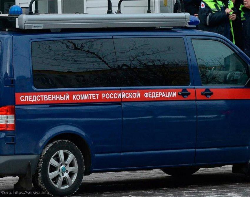 Пропавшая под Новый год школьница из Санкт-Петербурга, которую считали погибшей, вернулась домой