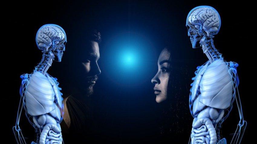 Как стать бессмертным: ученые назвали пять способов