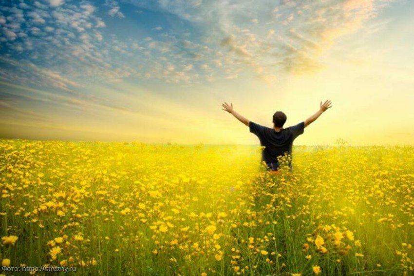 6 навыков, которые помогут раскрыть весь свой потенциал