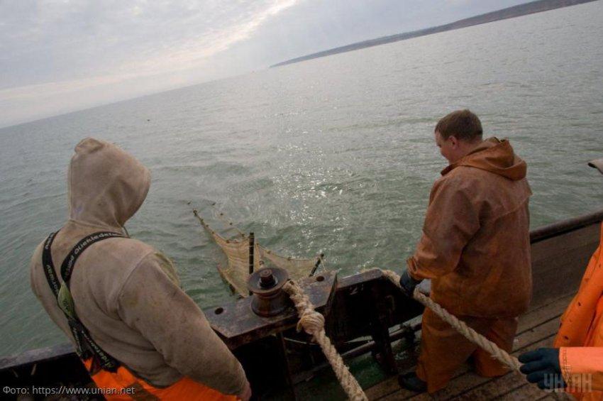 Более 900 тысяч рублей ущерба морским биоресурсам Азовского моря нанесли промысловики