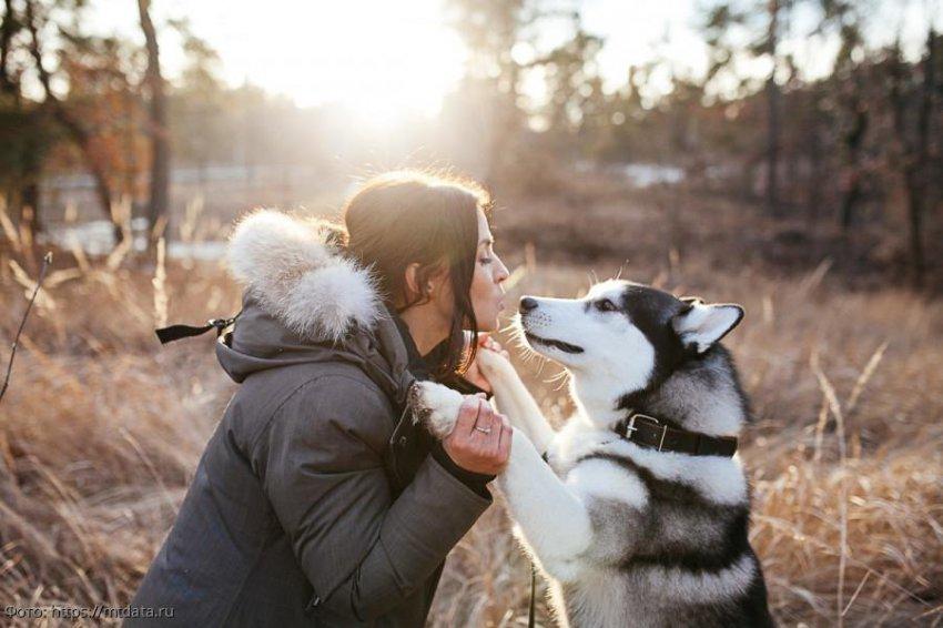Собаки помогают продлевать жизнь хозяевам, пережившим инфаркты